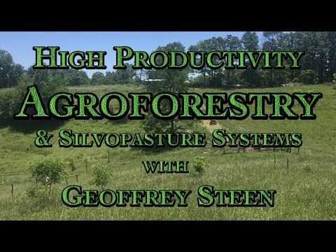 High Productivity Agroforestry & Silvopasture Systems with Geoffrey Steen