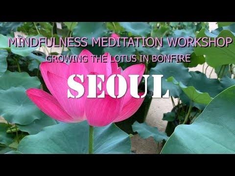 MINDFULNESS MEDITATION WORKSHOP Project : Growing the Lotus in Bonfire(SEOUL)