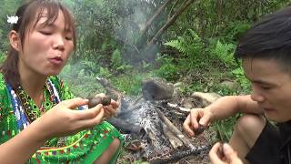 Survival skills: Primitive girl finding food meet snails and Yummy cooking snails - Eating delicious