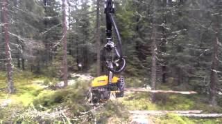 Repeat youtube video นักประดิษฐ์มะกันหัวใส คิดค้นเครื่อง 'Auto logging' ตัดไม้ทั้งต้นภายในเวลาไม่ถึง 1 นาที ชาวเน็ตรุมจวก