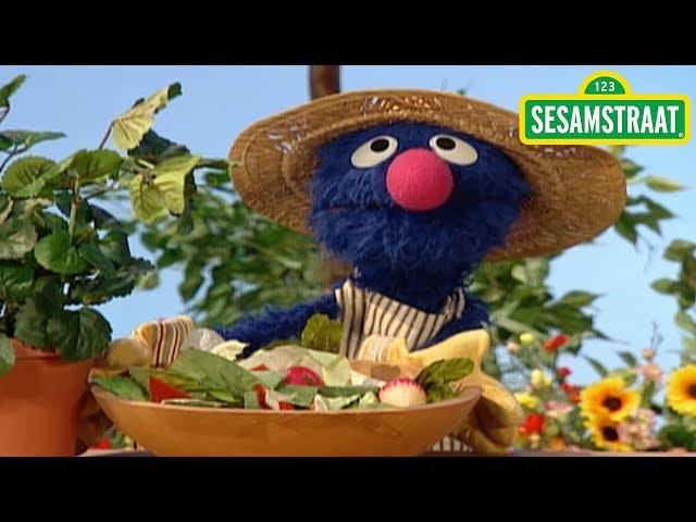Wat eet een plant? - Grover - Sesamstraat