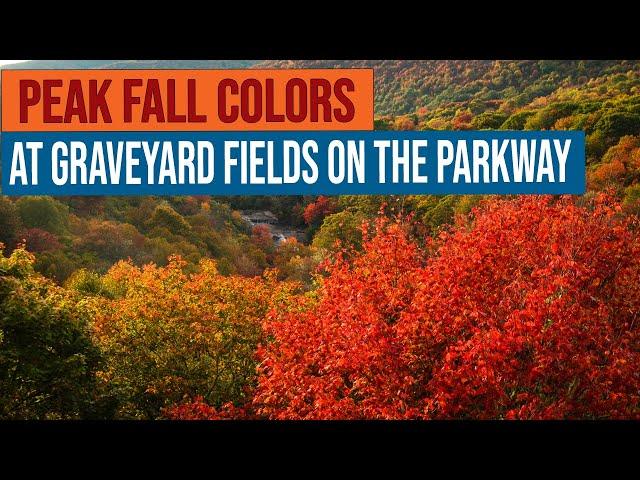 Peak Fall Colors at Graveyard Fields on the Blue Ridge Parkway