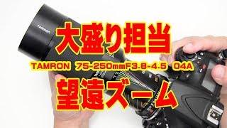 ズム・エボ 第7回 TAMRON 75-250mmF3.8-4.5 (04A)
