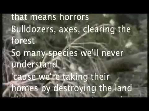 the original rainforest rap with lyrics