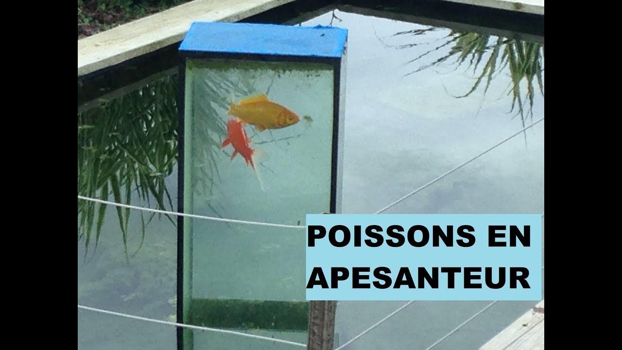 Fabriquer Une Tour A Poisson tuto diy realiser un aquarium inverser pour bassin