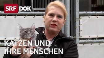Katzenliebe in der Schweiz | Katzen und ihre Menschen |  Doku | SRF DOK