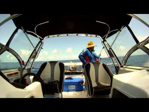 Offshore Fishing SEQ Jigging Trip 1770