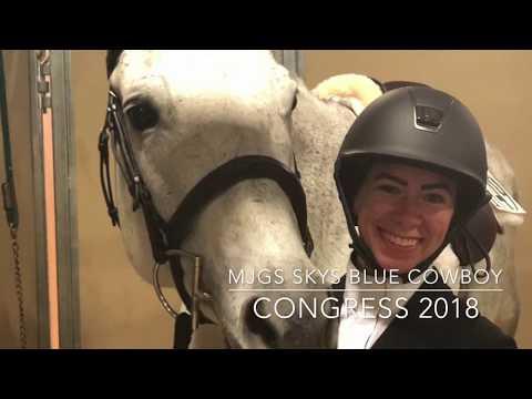 Quarter Horse Congress 2018   Rhoo
