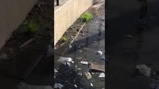 Perdita idrica al parcheggio del Punto