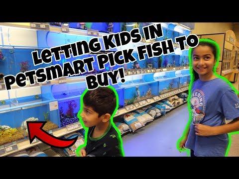 *Kids* Pick Fish I Buy At Petsmart (Oh The Irony!)