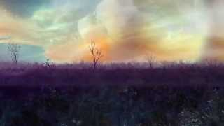 Lion of Rock   Gungor [OFFICIAL MUSIC VIDEO]