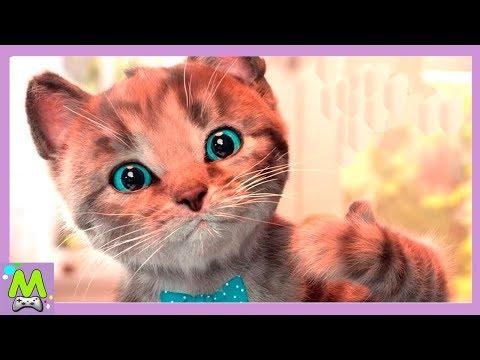 Кот возвращается мультфильм