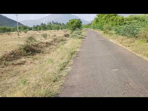 low budget land for sale in madurai | 10 acre | 15000 per cent | 9942422266