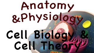 Cell Biology For Anatomy and Physiology : Introduction Cell Biology and Cell Theory (03:01)