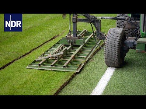 Gras säen, pflegen, rollen: Der perfekte Rasen | Wie geht das? | NDR Doku