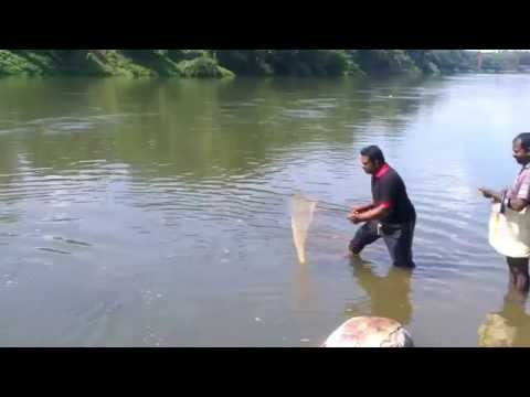 kerala local style fishing