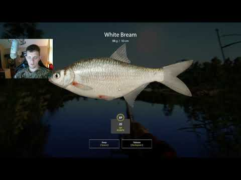 Russian Fishing 4 Fun And Efficient Leveling Guide Part 34 Return To Mosquito