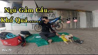 Ra Gầm Cầu Ngủ Vì Quá Mệt Mỏi Với Con COVID19 | Ben TV