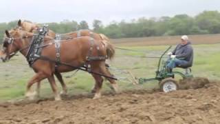 Horse plowing at Rohrer Farm