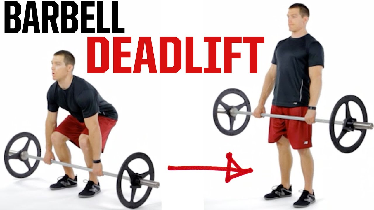 Image result for Barbell deadlift