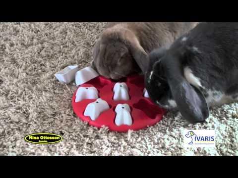 Dog Smart (kunststof) – konijn