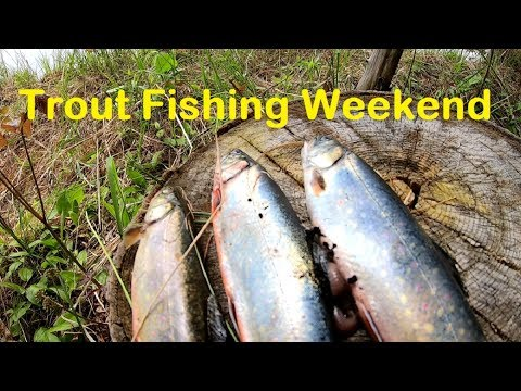 Trout Fishing Trip To Denbigh Ontario