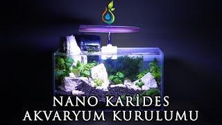 Low Tech Nano Bitkili Karides Akvaryum Kurulumu / Low Tech Nano Planted Shrimp Aquarium Setup