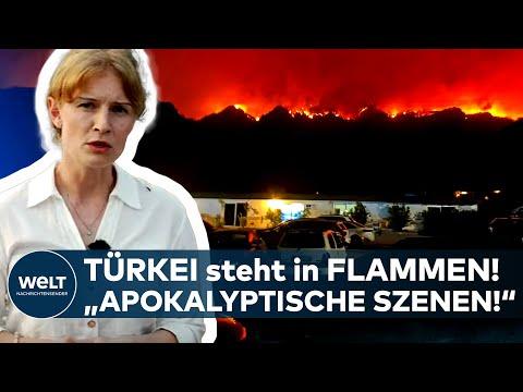 """TÜRKEI in FLAMMEN: """"Apokalyptische Szenen!"""" - So ist die aktuelle Lage in Bodrum, Antalya und Mugla"""