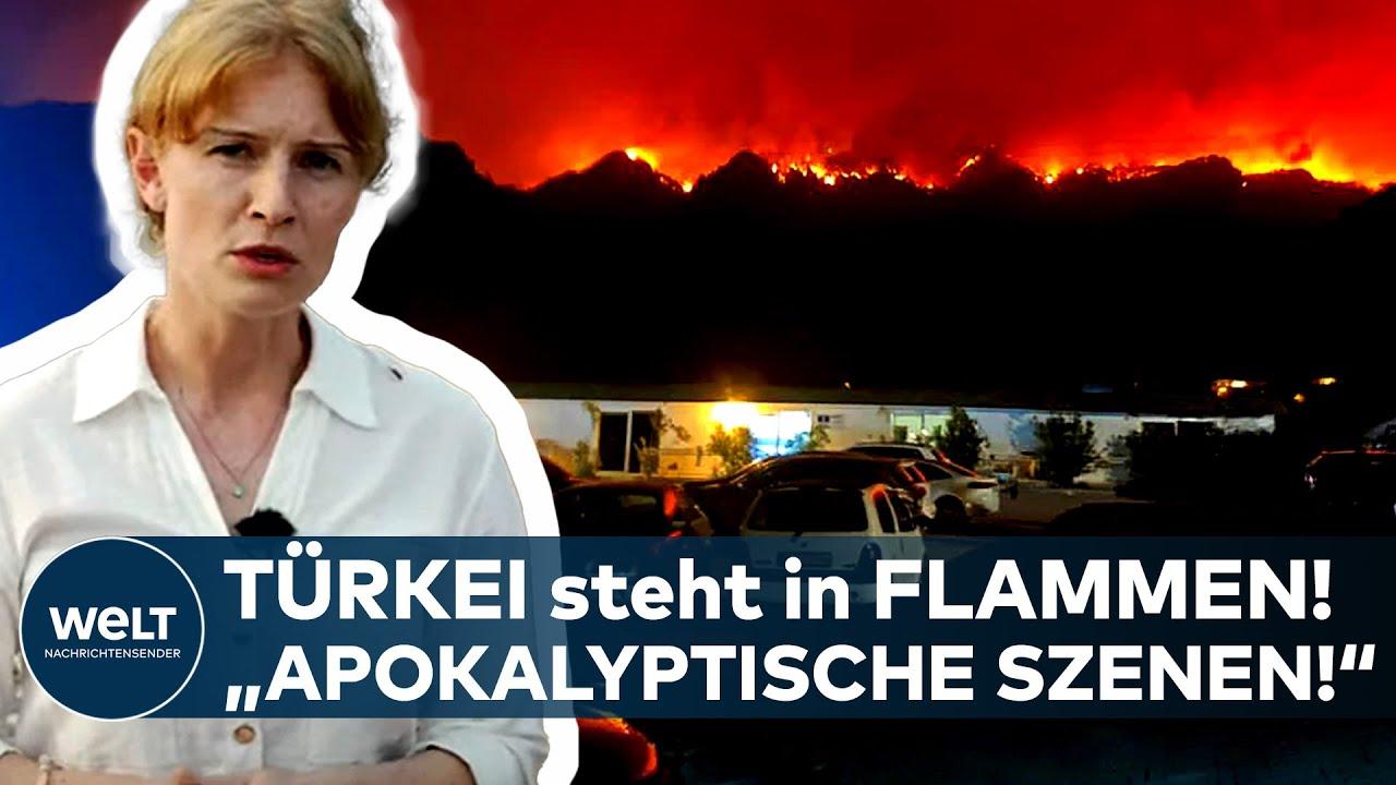 """Download TÜRKEI in FLAMMEN: """"Apokalyptische Szenen!"""" - So ist die aktuelle Lage in Bodrum, Antalya und Mugla"""