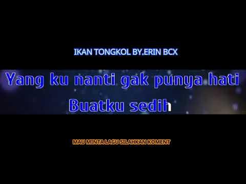 IKAN TONGKOL BY ERIN BCX