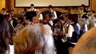 "Le beau Danube bleu  Concert "" Johann Strauss "" le 11/01/2015"