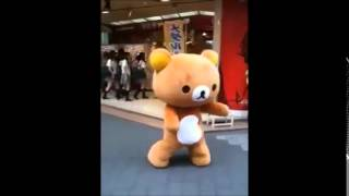 Teddy bear dance levan polka cover!!!! - mikuo hatsune