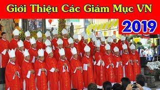 Giới Thiệu Các Giám Mục Của 27 Giáo Phận Công Giáo VN I Tin Tức Công Giáo Mới Nhất