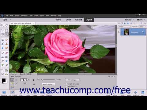 Photoshop Elements 2018 Tutorial The Quick Selection Tool Adobe Training