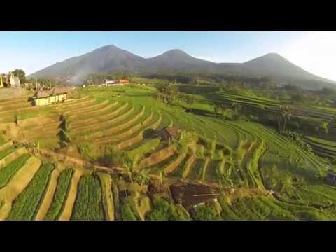 Subak, The Beauty of Heaven in Bali