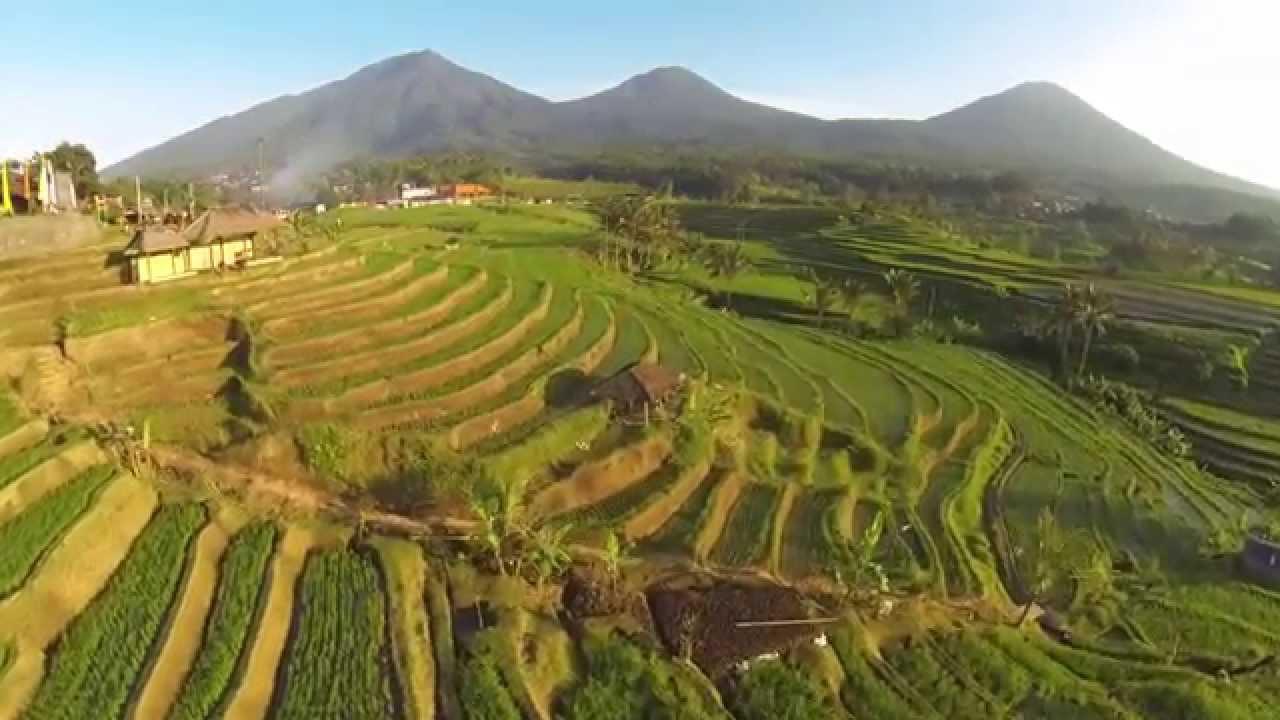 Subak The Beauty Of Heaven In Bali Youtube
