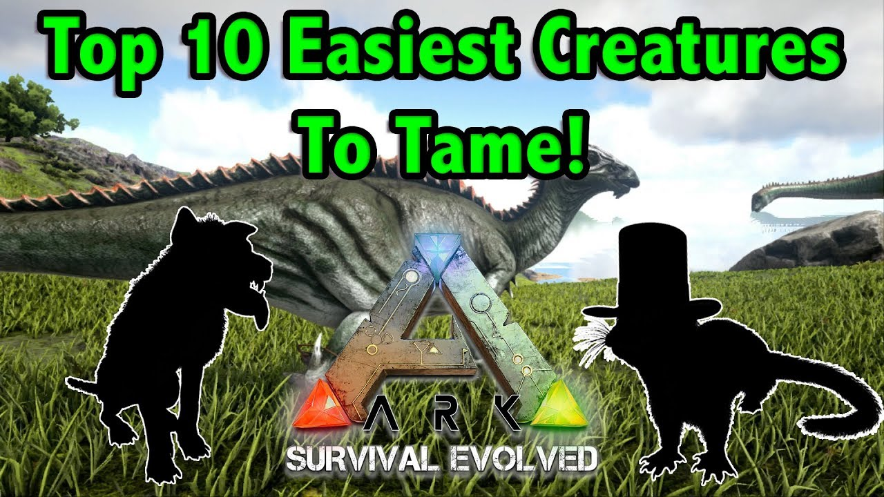 Daeodon Guide For Ark Survival Evolved By Mitt Gaming Ark daeodon guide (how to tame, drops, food, location…) the daeodon is the largest species of entelodont, even though it is a part of a group of ancient omnivorous mammals it is strictly a carnivore. daeodon guide for ark survival evolved