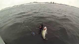 форум Охота Рыбалка Волгоград