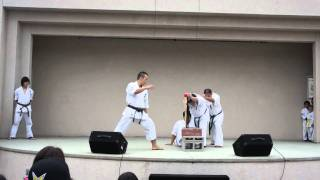 Yamaki Karate Demonstration, Sensei Toshiki Otani 3 Baseball Bat Low Kick Break