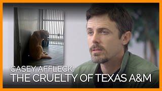 casey-affleck-to-texas-a-stop-cruel-dog-experiments