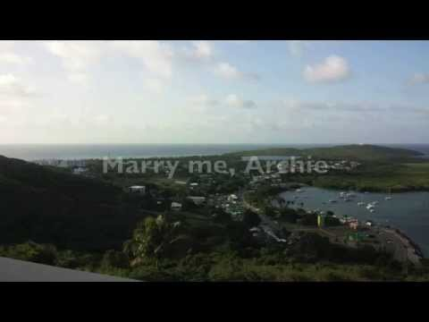 Alvvays - Archie, Marry Me (Lyrics on Screen)