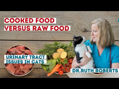 Dr. Ruth Live - Ask The Vet - Why Cooked Versus Raw Food? Cats With Urinary Tract Issues