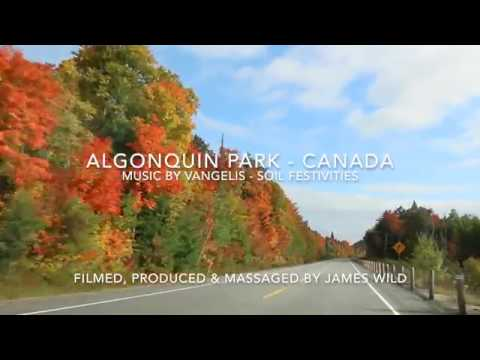 Stunning Drive Through Algonquin Park, Canada