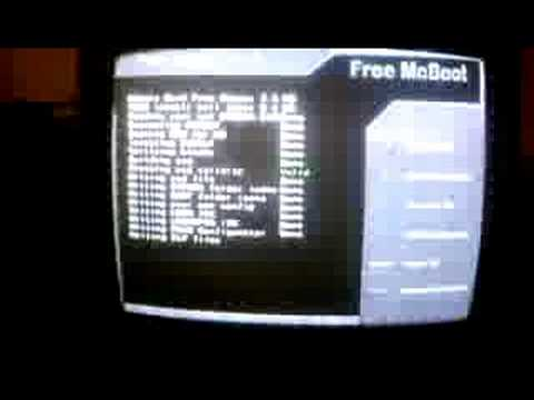free mc boot 1 7 and codebreaker v10