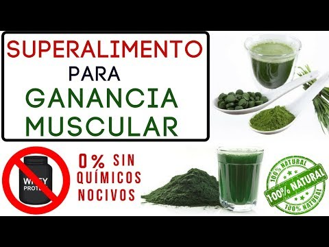 SPIRULINA para GANANCIA MUSCULAR & QUEMA DE GRASA