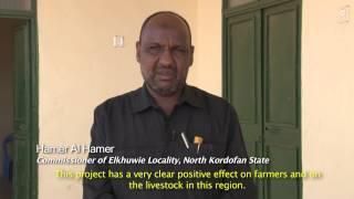 Bringing Hope to Sheep Herders in Sudan