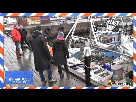 Oslo city - Norwegian fishermen selling fish in Oslo Harbor - Oslo attractions