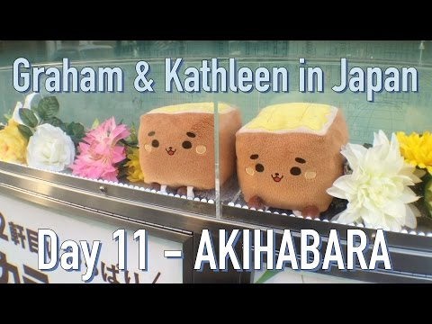 G&K In Japan - Day 11: Souvenirs from Akihabara