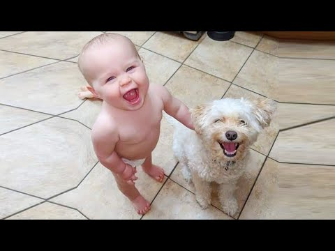 Funny Babies Dancing Hysterically With Dogs ★ Cute Baby And Dog Videos