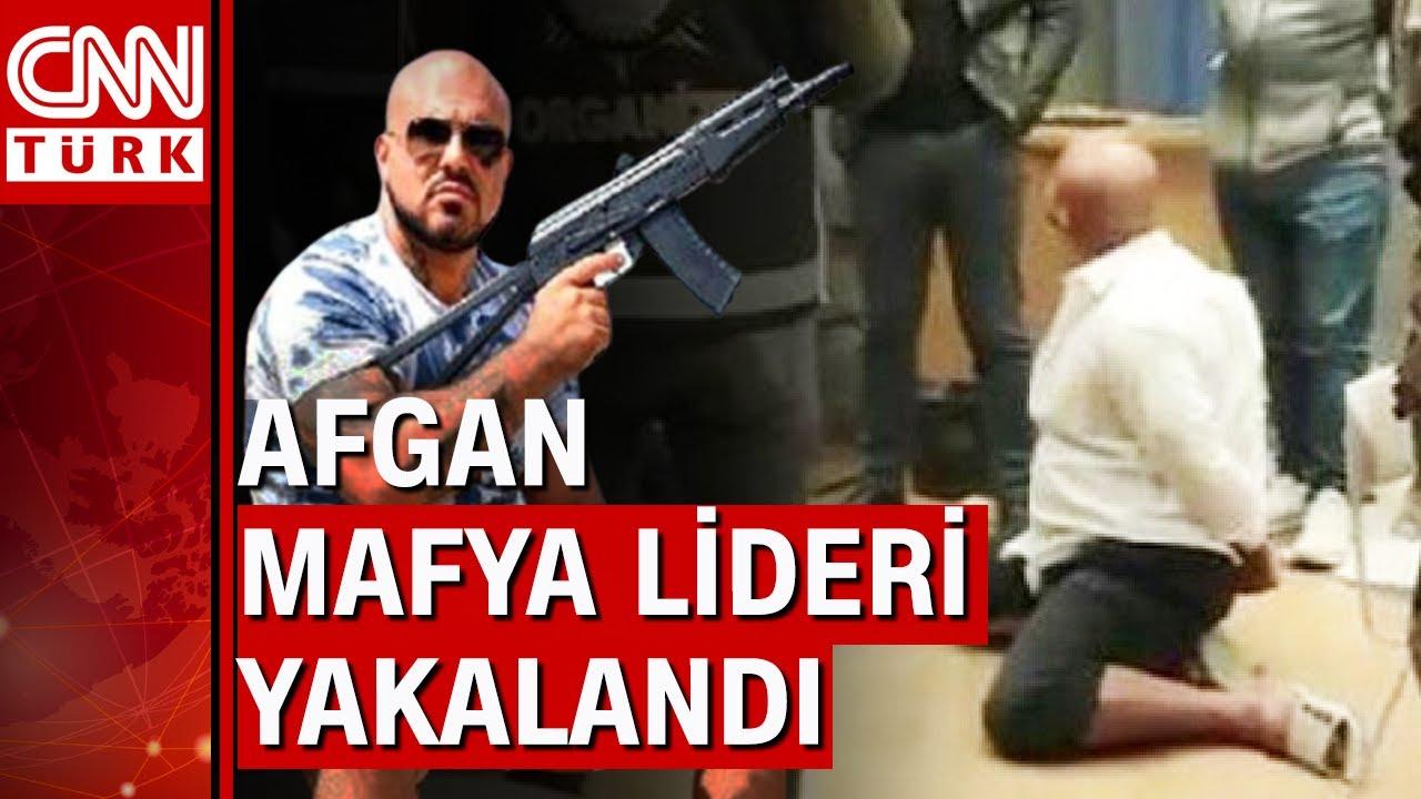 Download Afgan mafya lideri Sanger Ahmadi İstanbul'da yakalandı